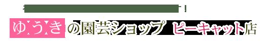 ゆうきの園芸ショップ バラ苗のお店